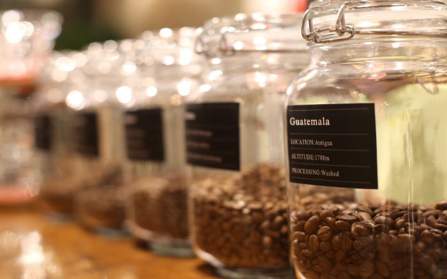 19t coffee