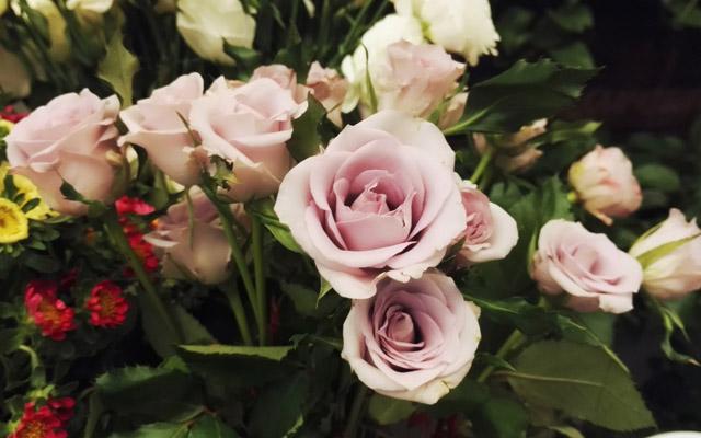 花,生命的有形艺术