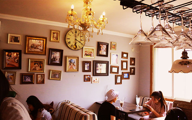 咪语咖啡猫咪体验咖啡馆