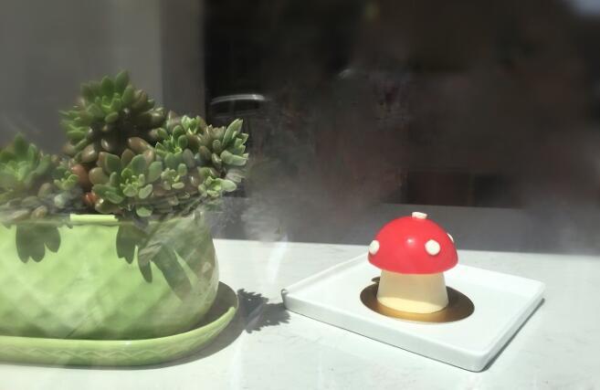 """温拿铁与""""毒蘑菇""""好像很配哟"""
