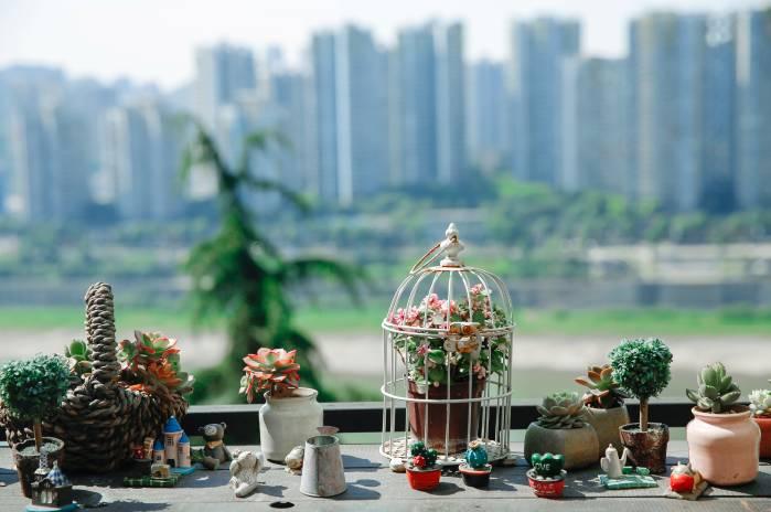 江畔寻花·咖啡小筑